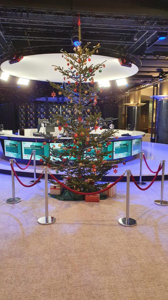 Ein Weihnachtsbaum für Brüssel - Foto: Alexander Bernhuber